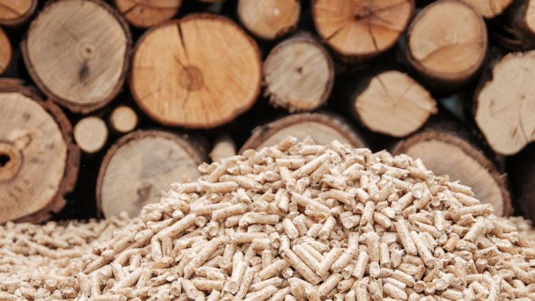 legna-e-pellet